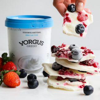 Iogurte tipo Grego 0% Gordura ZERO LACTOSE Yorgus 500 g